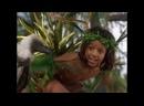 Книга джунглий история Маугли 1998