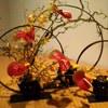 Все о флористике для начинающих флористов