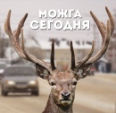 Персональный фотоальбом Можги Сегодни