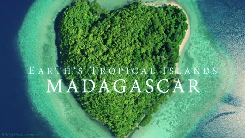 BBC Тропические островки Земли 1 Мадагаскар Познавательный природа животные 2019