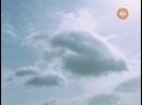 Спецотряд Кобра 11 Дорожная полиция 7 сезон 12 серия RUS