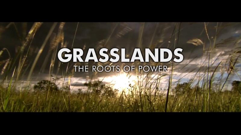 BBC Планета людей Часть 6 Равнины Источники силы Human Planet Jungles Grasslands The Root of Power HD
