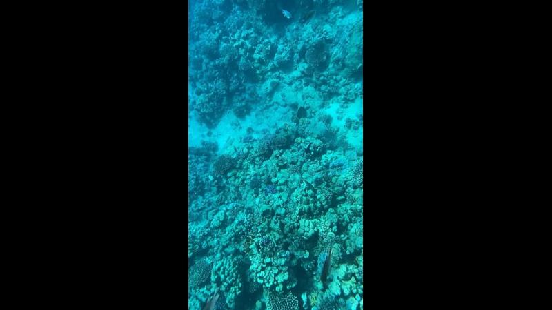 Видео от Uv Travel