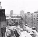 Болотских Никита | Новосибирск | 1