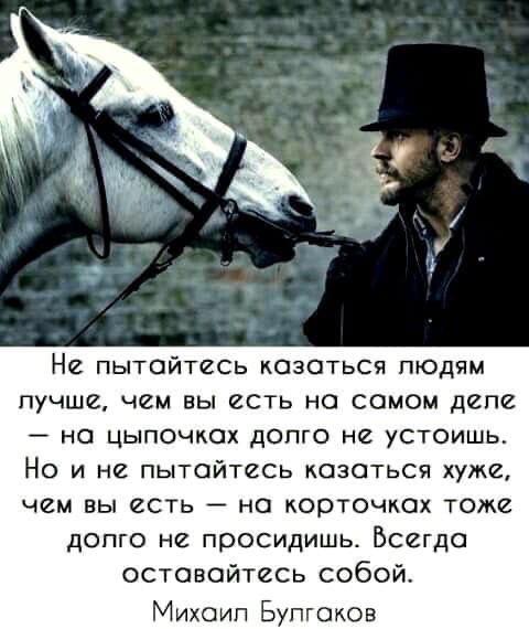 Войтович Елена Павловна - Про препода