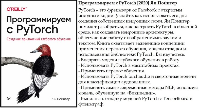 Программируем с PyTorch [2020] Ян Пойнтер