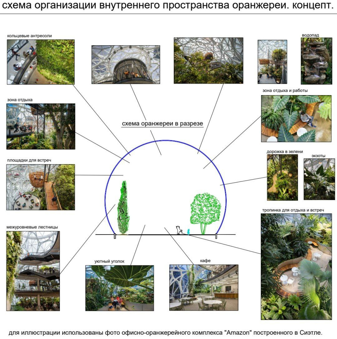 Определена концепция будущей оранжереи ботанического сада в Лиде.