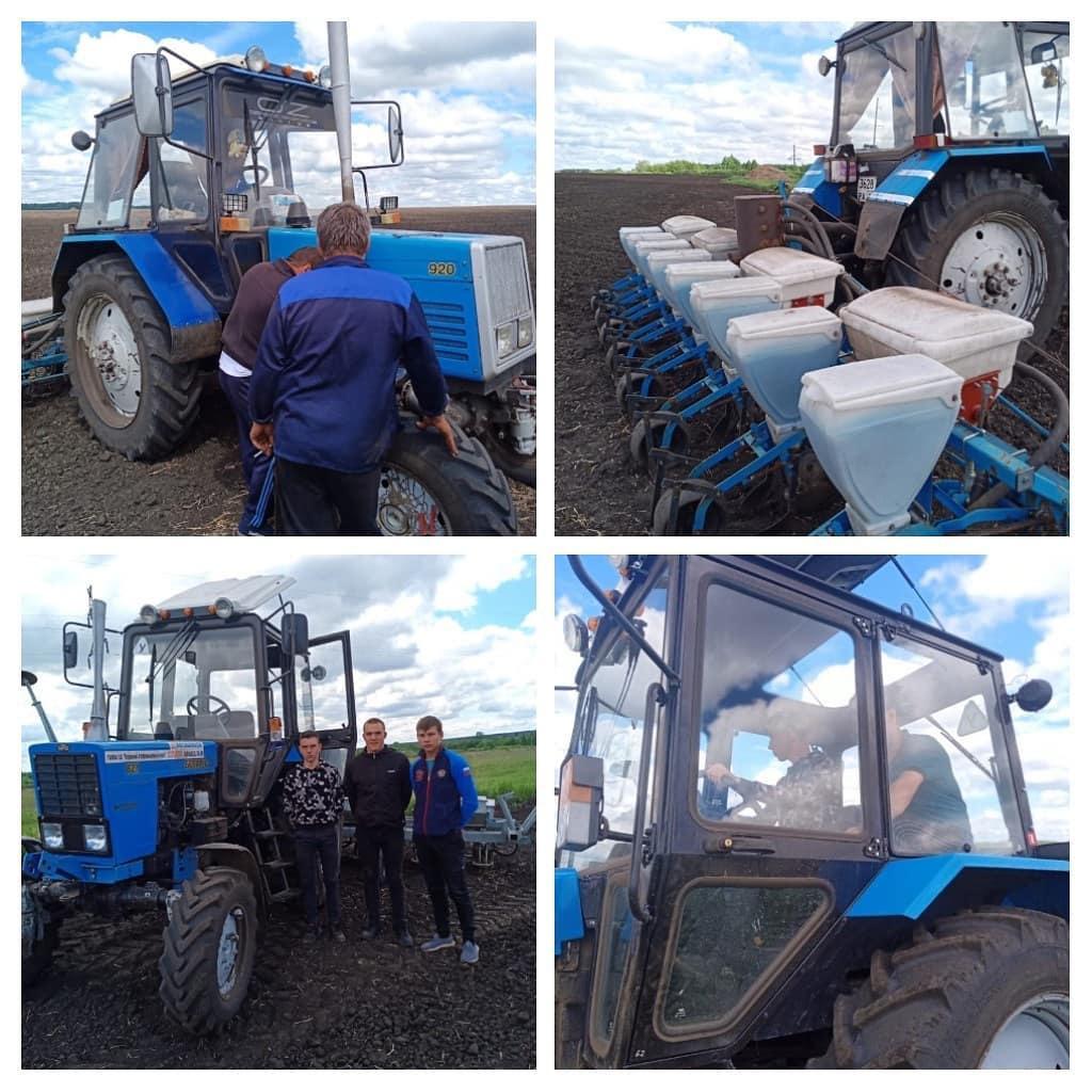 Студенты Петровского аграрного лицея проходят производственную практику