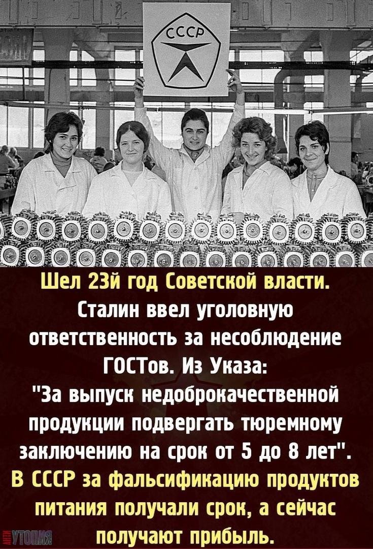 АНТИУТОПИЯ  УТОПИЯ 144001