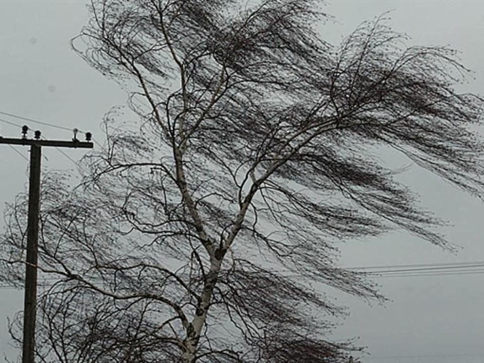 Региональное ГУ МЧС предупреждает жителей о неблагоприятных метеорологических явлениях