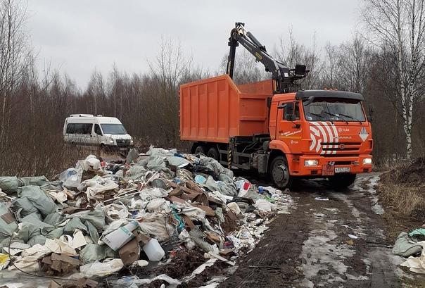 ❗Штрафы за незаконный вывоз мусора увеличат до сот...