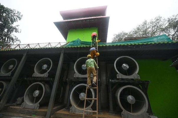 В столице Индии открылась первая «Башня смога»