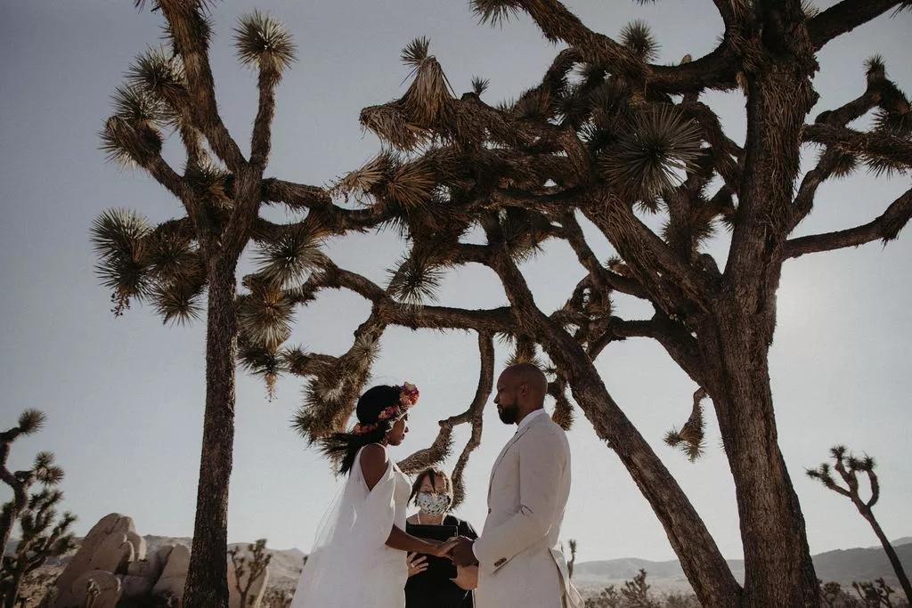 Wr  6xR8ZQ0 - Найти свадебного ведущего оказалось проще простого