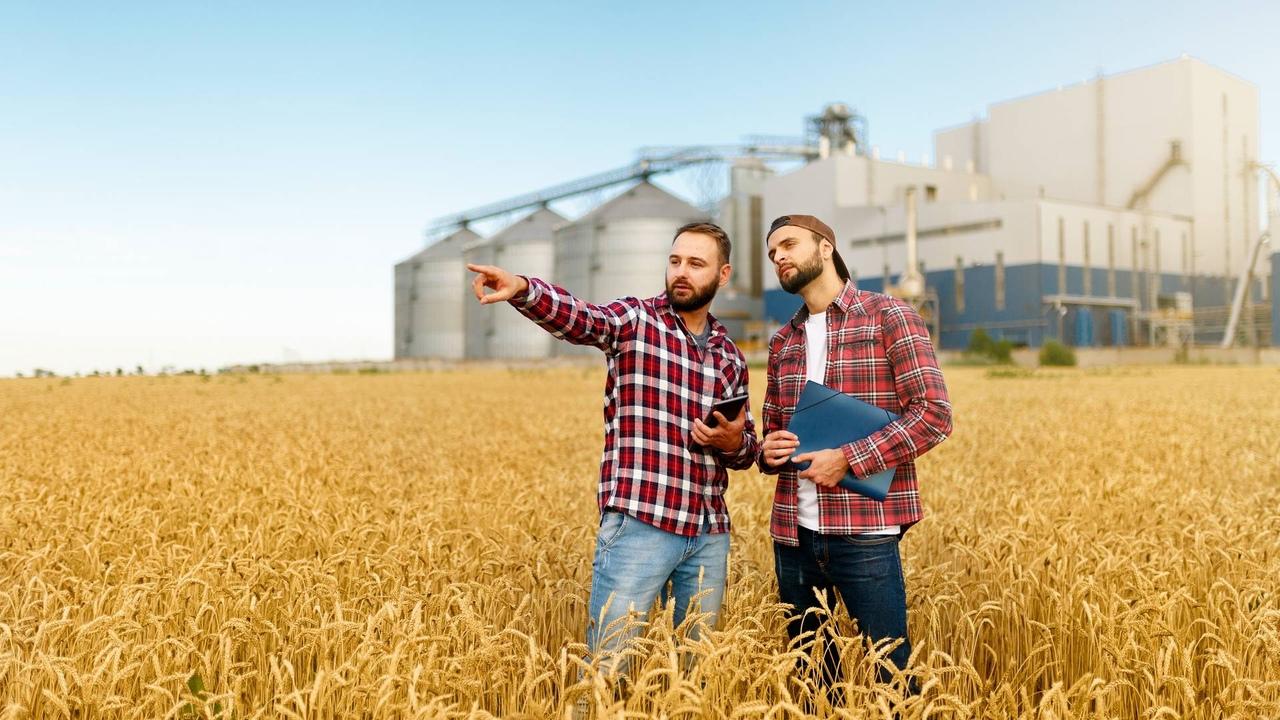 Минсельхоз области проводит отбор претендентов - сельхозтоваропроизводителей на возмещение затрат, связанных с оплатой труда и проживанием студентов-практикантов