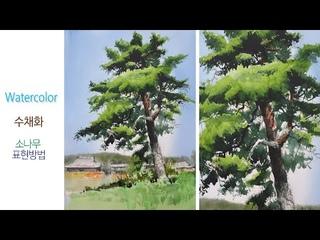 소나무표현/choeSSi art /Watercolor painting/최병화수채화/tutorial of watercolor