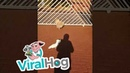 Barking Bird Guards the House like a Dog || ViralHog