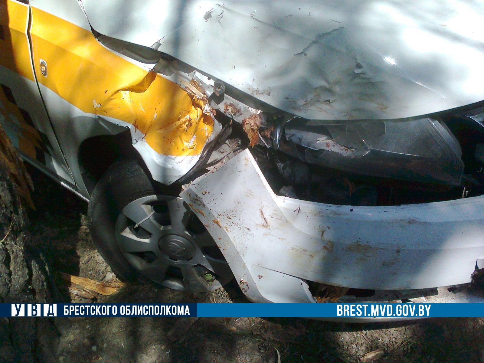 """Не вписался... Брестчанин получил права, сел за руль авто """"с шашечками"""" и разбил его о дерево"""
