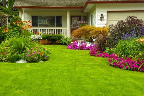 Как правильно стричь газон, изображение №4