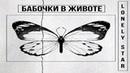 Lonely Star - Бабочки в животе