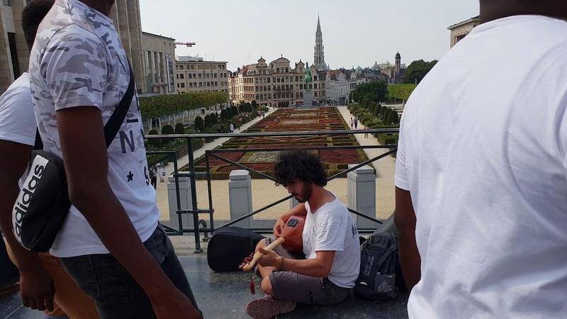 Neçedir Ağlarsın Ey Kaşı Keman - Loudingirra Özdemir (Brüksel, Belçika)
