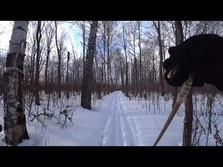 Тест Sony AS 300 на лыжах в марте