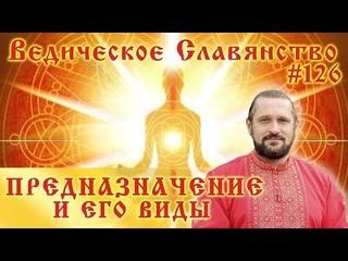 ПРЕДНАЗНАЧЕНИЕ И ЕГО ВИДЫ. Вопросы и ответы. #126 Владимир Куровский