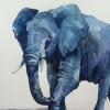 Слоны | Слоники