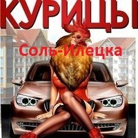 Курицы СольИлецка