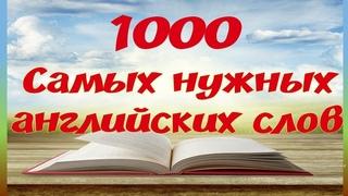 Английский язык. 1000 английских слов, которые должен знать каждый. Английский для начинающих