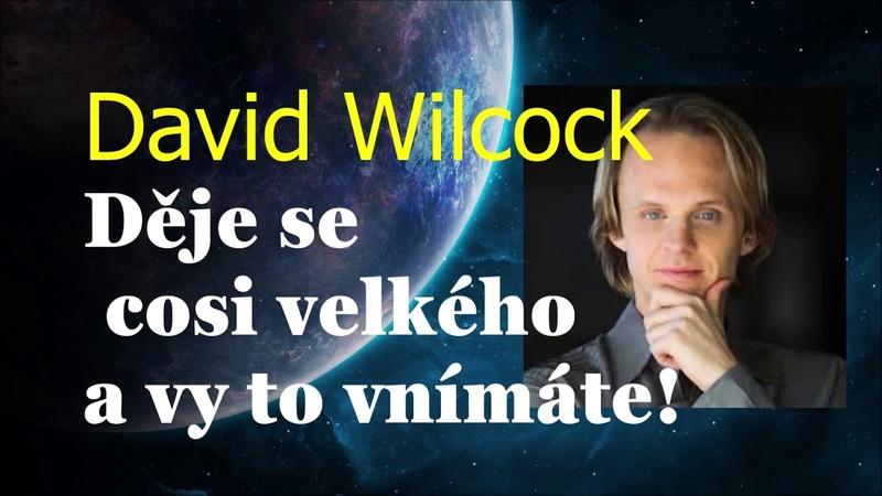 David Wilcock Děje se cosi velkého a vy to vnímáte